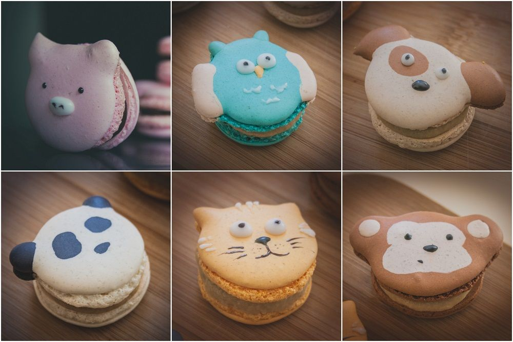 animal_macarons2-s